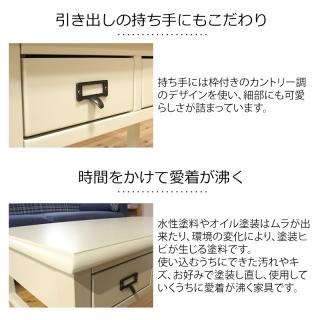 カントリーデザイン引出付きリビングテーブル  / Sage(セージ)
